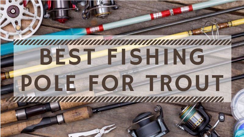 Best Fishing Pole For Trout 2018